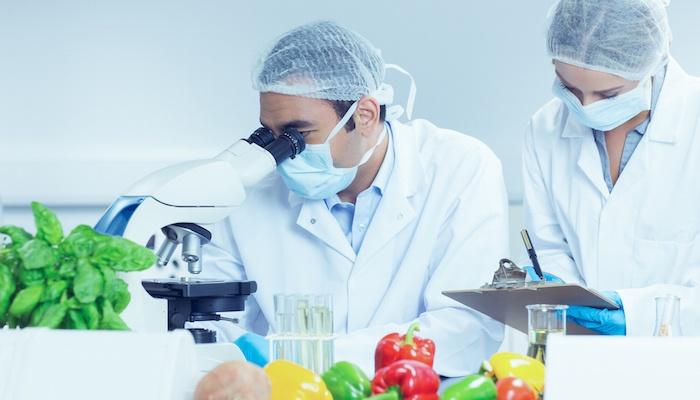 Reformulating Foods