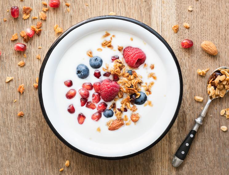Dried_Greek_Yogurt_Powder_Case_Study