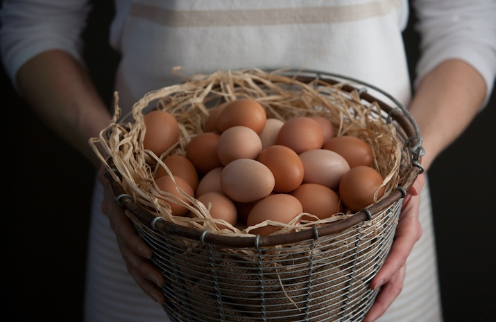 Alternatives for Eggs as Prices Rob Profits