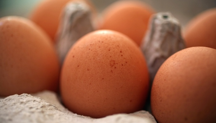 cage-free-eggs.jpg
